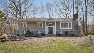 68 Green Hill Road, Springfield Twp., NJ 07081 (MLS #3370152) :: The Dekanski Home Selling Team