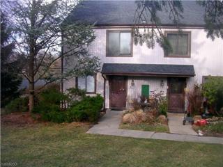 441 Dell Pl, Stanhope Boro, NJ 07874 (MLS #3370240) :: The Dekanski Home Selling Team