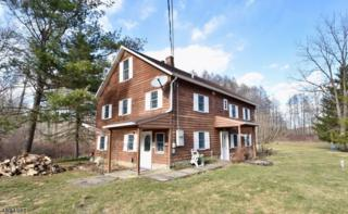 60 Stockholm Vernon Rd, Hardyston Twp., NJ 07460 (MLS #3370260) :: The Dekanski Home Selling Team
