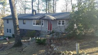 105 Pine Ln, Vernon Twp., NJ 07422 (MLS #3370273) :: The Dekanski Home Selling Team