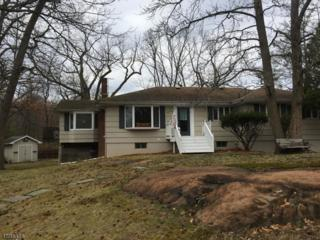 43 Skytop Rd, Cedar Grove Twp., NJ 07009 (MLS #3370274) :: The Dekanski Home Selling Team