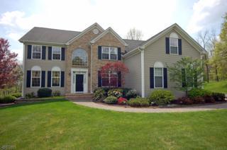 5 Blossom Ln, Raritan Twp., NJ 08822 (MLS #3370343) :: The Dekanski Home Selling Team