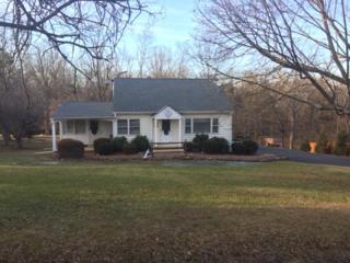 132 Otto Rd, Branchburg Twp., NJ 08853 (MLS #3370366) :: The Dekanski Home Selling Team