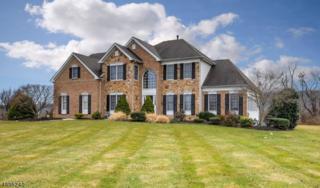 17 Halls Mill Rd, Franklin Twp., NJ 08802 (MLS #3370420) :: The Dekanski Home Selling Team