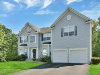 26 Winding Ridge Road, Jefferson Twp., NJ 07849 (MLS #3370427) :: The Dekanski Home Selling Team