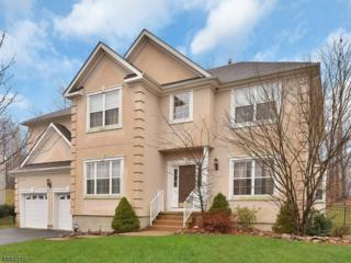 817 White Oak Court, Jefferson Twp., NJ 07849 (MLS #3370428) :: The Dekanski Home Selling Team