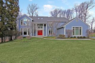 12 Mckay Dr, Bridgewater Twp., NJ 08807 (MLS #3370436) :: The Dekanski Home Selling Team