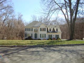 15 Butternut Way, Sparta Twp., NJ 07871 (MLS #3370467) :: The Dekanski Home Selling Team
