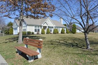10 Stafford Ln, White Twp., NJ 07823 (MLS #3370484) :: The Dekanski Home Selling Team
