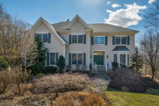 28 Vizcaya Ct, Wayne Twp., NJ 07470 (MLS #3370505) :: The Dekanski Home Selling Team