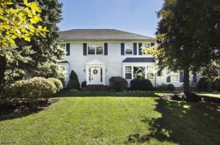 12 Cambridge Dr, Washington Twp., NJ 07853 (MLS #3370580) :: The Dekanski Home Selling Team