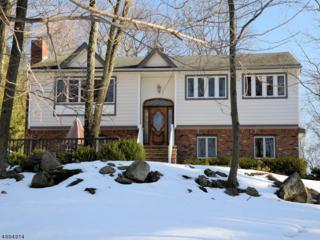197 Alpine Trl, Sparta Twp., NJ 07871 (MLS #3370713) :: The Dekanski Home Selling Team