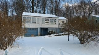 50 Winona Trl, Jefferson Twp., NJ 07849 (MLS #3370719) :: The Dekanski Home Selling Team