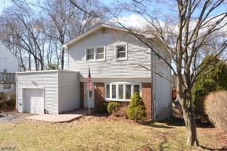 47 Hibernia Rd, Rockaway Twp., NJ 07866 (MLS #3370737) :: The Dekanski Home Selling Team
