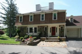1 Eaglet Gln, Allamuchy Twp., NJ 07840 (MLS #3370758) :: The Dekanski Home Selling Team