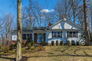 111 Lenape Lane, Berkeley Heights Twp., NJ 07922 (MLS #3370847) :: The Dekanski Home Selling Team