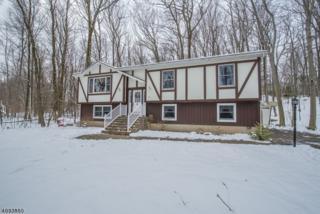 47 Jenkins Rd, West Milford Twp., NJ 07421 (MLS #3370864) :: The Dekanski Home Selling Team