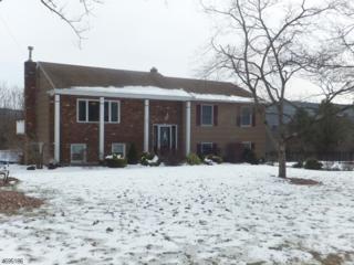 30 Slope Dr, Mansfield Twp., NJ 07840 (MLS #3371057) :: The Dekanski Home Selling Team