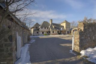268 Mount Harmony Rd, Bernardsville Boro, NJ 07924 (MLS #3371144) :: The Dekanski Home Selling Team