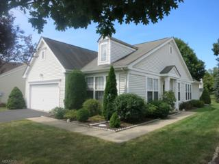 20 Victoria Dr, White Twp., NJ 07823 (MLS #3371204) :: The Dekanski Home Selling Team