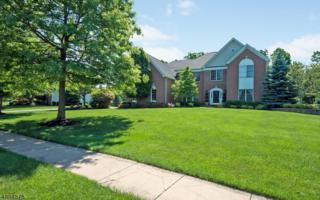 78 Kim Ln, Washington Twp., NJ 07853 (MLS #3371290) :: The Dekanski Home Selling Team