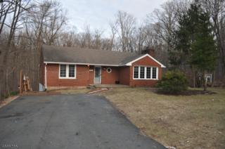 43 White Birch Trl, Jefferson Twp., NJ 07460 (MLS #3371330) :: The Dekanski Home Selling Team