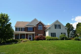 1 Grove Farm Rd, Union Twp., NJ 08867 (MLS #3371429) :: The Dekanski Home Selling Team