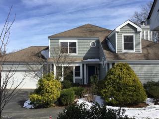 20 Woodcrest Dr, Morris Twp., NJ 07960 (MLS #3371494) :: The Dekanski Home Selling Team