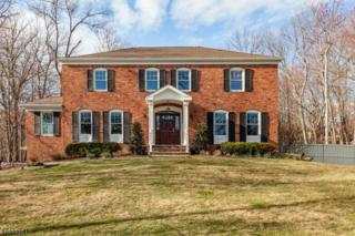 52 Thornley Dr, Chatham Twp., NJ 07928 (MLS #3371510) :: The Dekanski Home Selling Team
