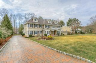 487 Long Hill Dr, Millburn Twp., NJ 07078 (MLS #3371547) :: The Dekanski Home Selling Team