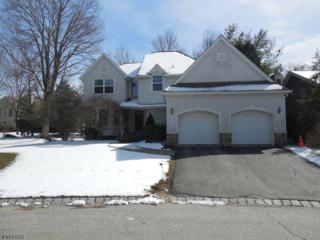 21 Red Oak Dr, Hardyston Twp., NJ 07419 (MLS #3371571) :: The Dekanski Home Selling Team