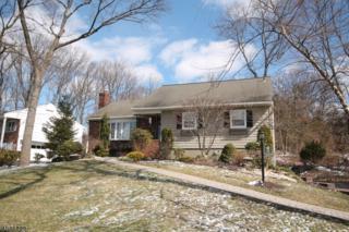 15 Geneva Ct, Wayne Twp., NJ 07470 (MLS #3371612) :: The Dekanski Home Selling Team