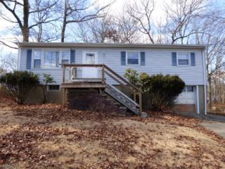 4 Heiman Dr, Hopatcong Boro, NJ 07843 (MLS #3371636) :: The Dekanski Home Selling Team