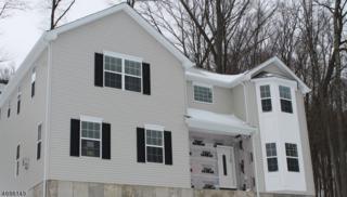 9 Locust Ct, Allamuchy Twp., NJ 07840 (MLS #3371783) :: The Dekanski Home Selling Team