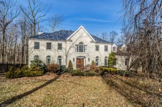 19 Nottingham Way, Warren Twp., NJ 07059 (MLS #3371810) :: The Dekanski Home Selling Team