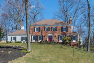 18 Dale Dr, Morris Twp., NJ 07960 (MLS #3371842) :: The Dekanski Home Selling Team