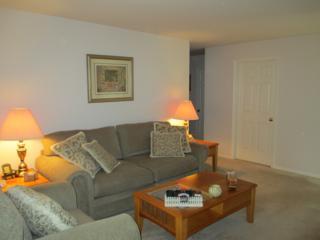 183 Mary Ct, Bridgewater Twp., NJ 08807 (MLS #3371850) :: The Dekanski Home Selling Team