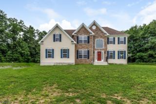 210 Heath Rd, Kingwood Twp., NJ 08822 (MLS #3371909) :: The Dekanski Home Selling Team
