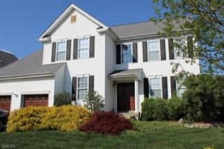 49 Goldstar Dr, Franklin Twp., NJ 08540 (MLS #3371953) :: The Dekanski Home Selling Team