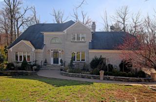 35 Swenson Cir, Berkeley Heights Twp., NJ 07922 (MLS #3372015) :: The Dekanski Home Selling Team