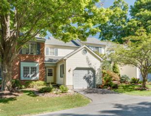102 Goldfinch Mdws, Allamuchy Twp., NJ 07840 (MLS #3372390) :: The Dekanski Home Selling Team