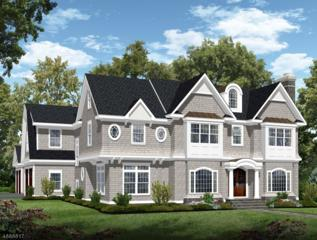 11 Sandy Hill Rd, Chatham Twp., NJ 07928 (MLS #3372408) :: The Dekanski Home Selling Team