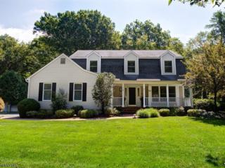 10 Applewood Ln, Morris Twp., NJ 07960 (MLS #3372517) :: The Dekanski Home Selling Team