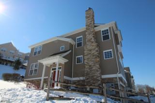62 Indigo Rd, Allamuchy Twp., NJ 07840 (MLS #3372562) :: The Dekanski Home Selling Team
