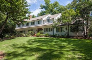 18 Timber Acres Rd, Millburn Twp., NJ 07078 (MLS #3372582) :: The Dekanski Home Selling Team
