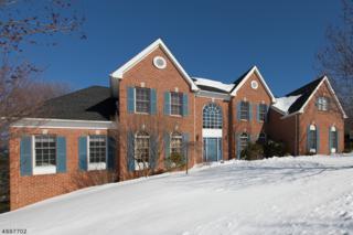 32 Sentinel Dr, Bernards Twp., NJ 07920 (MLS #3372634) :: The Dekanski Home Selling Team