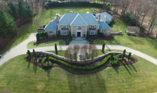 114 Seminary Dr, Mahwah Twp., NJ 07430 (MLS #3372640) :: The Dekanski Home Selling Team