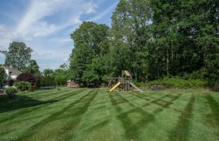 6 Hickory Ln, Green Brook Twp., NJ 08812 (MLS #3372752) :: The Dekanski Home Selling Team