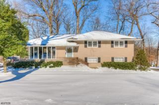 278 Timber Dr, Berkeley Heights Twp., NJ 07922 (MLS #3372764) :: The Dekanski Home Selling Team