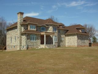 3 Danburry Ct, Hillsborough Twp., NJ 08844 (MLS #3372819) :: The Dekanski Home Selling Team